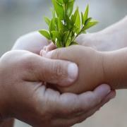 שישי בא-לגן: 'מחומש ההורות'